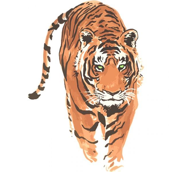 tee shirt tigre chinois  u0026quot tatouage u0026quot  blanc