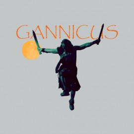 T-shirt Gannicus gray