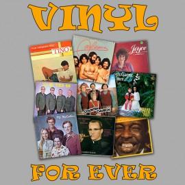 Vinyl gray for Ever