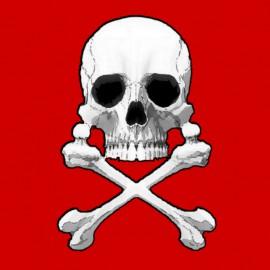 Captain Harlock-Harlock.Skull.Rouge