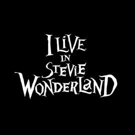 País de las maravillas de Stevie