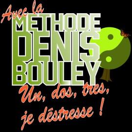 Tee shirt Fais pas ci fais pas ca Denis Bouley noir