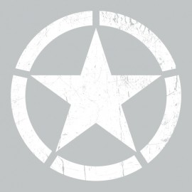 Tee Shirt Roundel Star Grey US
