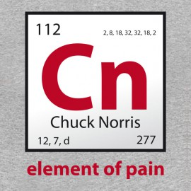 Tee Shirt Chuck norris element of gray bread