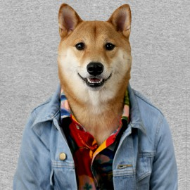 camisa de ropa de hombre gris brezo perro