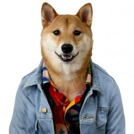 camisa de ropa de hombre perro blanco