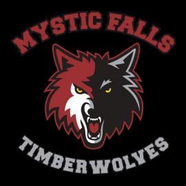 Tee Shirts Mystic Falls - Vampire Diaries - negro