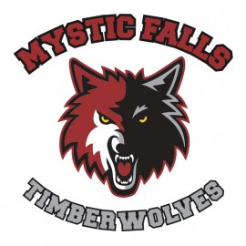 Tee Shirts Mystic Falls - Vampire Diaries - blanco