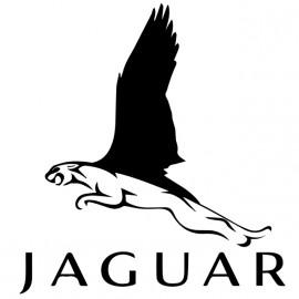 Jaguar camisa blanca