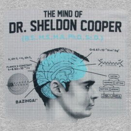 own the mind of dr sheldon cooper gray