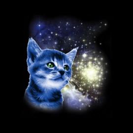 tee shirt le chat dans l'espace