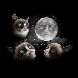 tee shirt cat of the moon