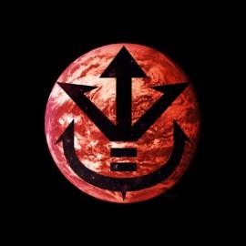 tee shirt vegeta planete dragon ball
