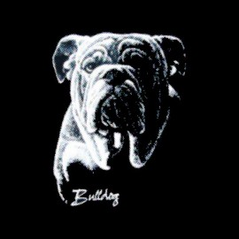tee shirt bulldog trame