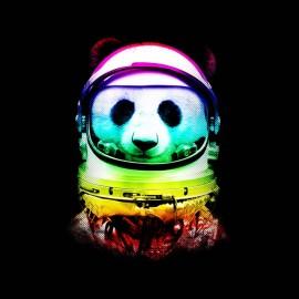tee shirt space panda