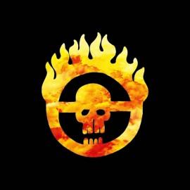 tee shirt one piece logo flamme