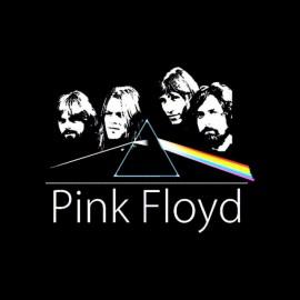 tee shirt pink floyd vintage special