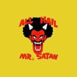 tee shirt mr satan dragon ball