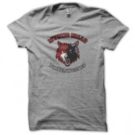 Tee Shirts Mystic Falls - Vampire Diaries - gris