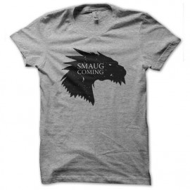 tee shirt smaug is coming gris