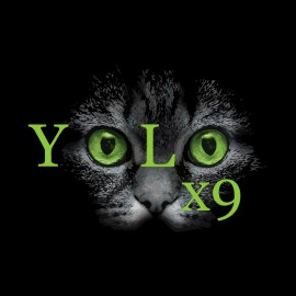 yolo chat Start meeting singles in yolo today with our free online personals and free yolo chat yolo is full of single men and women like you looking for dates.